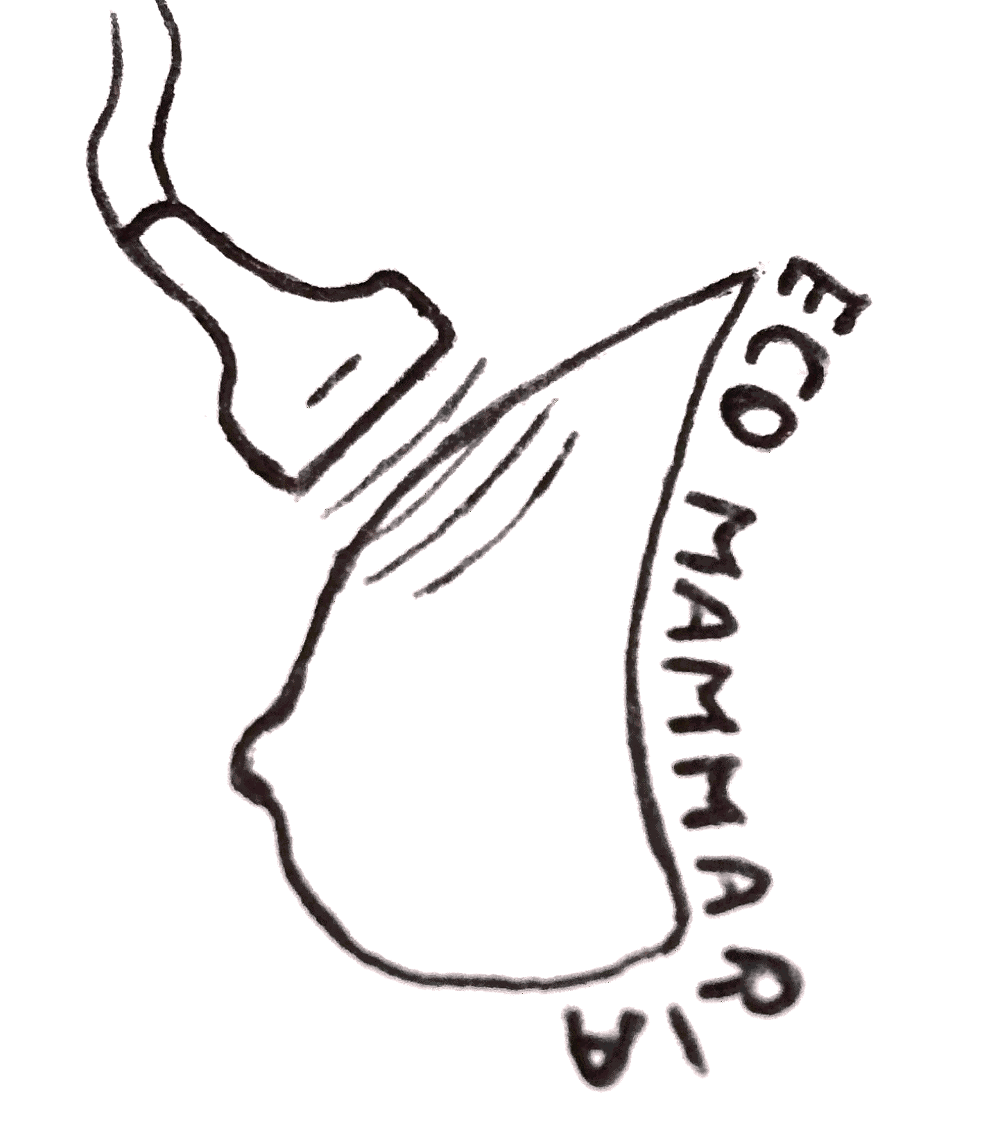 Ecografia mammaria