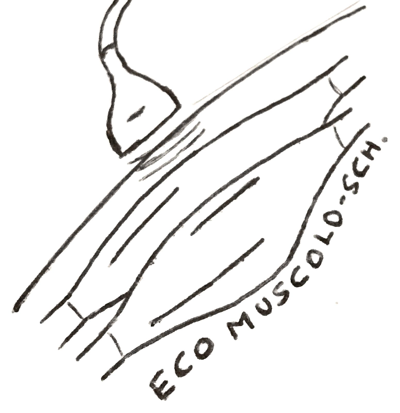 Ecografia muscolo-scheletrica